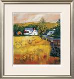 Moniaive Village Limited Edition Framed Print by Davy Brown