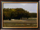Chamberino Orchards Midday Print by Marc Bohne