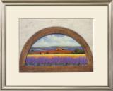 Lavander Fields Prints by G. Pino