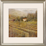 Wine Country I Posters by Michael Longo