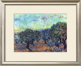 The Olive Grove, c.1889 Print by Vincent van Gogh