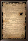 Beer Pong Constitution Posters
