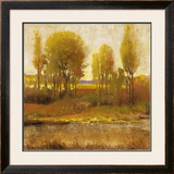 Golden Light I Prints by P. Patrick