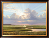 Low Country Splendor Poster by Henry Von Genk