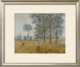 Summer Prints by Claude Monet