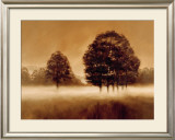 Misty Meadow Prints by Alan Parker