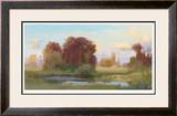 Soft Evening Limited Edition Framed Print by Steve Parker