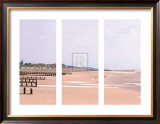 Beach Triptych Art by Bill Philip