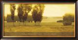 Timeless Meadow Posters by Andrzej Skorut