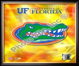 University of Florida Gators 2008 Logo Framed Photographic Print