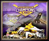 Louisiana State University Tigers 2009 NCAA Baseball Champions Framed Photographic Print
