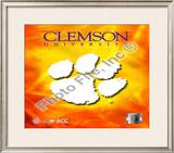 2008 Clemson University Team Logo Framed Photographic Print