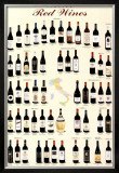 Italian Red Wines Posters