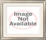 Neil Armstrong, Commander of the Apollo 11 Framed Photographic Print