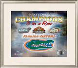 Florida Gators Framed Photographic Print