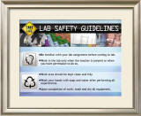 Guidelines Posters