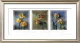 Flower Studies I Print by Jim Frankoski