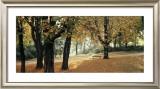 Automne au Parc Poster by Laurent Pinsard