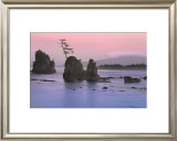 Pacific Coast Prints by Elizabeth Carmel