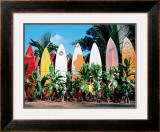 Old Surfboards Never Die Framed Giclee Print by Bernard Fickert