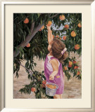 Just Peachy Poster by June Dudley