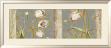 Tulip Rhapsody Prints by Lily Thomas