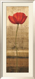 Poppy Panel I Prints by Andrea Kahn