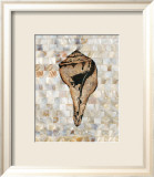 Pearlized Shell Poster by Regina-Andrew Design 
