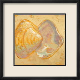 Shoreline Shells II Posters par Lorraine Vail
