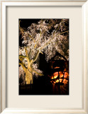 Kyoto in Spring, Cherry Blossoms in the Evening Prints by Takashi Kirita