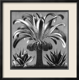 Palm, c.1933 Poster by M. C. Escher