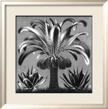 Palm, c.1933 Prints by M. C. Escher