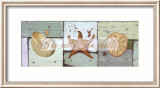 She Sells Sea Shells Poster by Tammy Repp