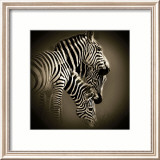Mirage Prints by Bobbie Goodrich