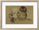 Owl And Bee Reproduction encadrée édition limitée par Joseph Crawhall