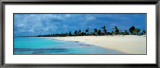 Barbuda Print by James Red