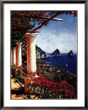 Pergola in Capri Art by Elizabeth Wright