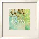 Reflections: Calm Poster von Jessica Vonammon