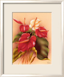 Red and White Anthuriums Print by Frank Oda