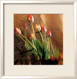 Tulip Reflection Posters by Susan Friedman