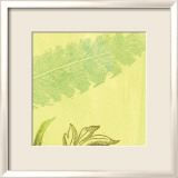 Feather Leaf Kunst af Swan Papel