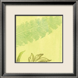 Feather Leaf Prints by Swan Papel