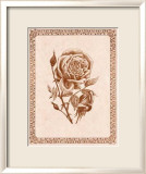 Sepia Rose I Prints by Samuel Kay