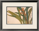 Brown Orchids Print by Kosikose