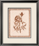 Sepia Rose II Prints by Samuel Kay