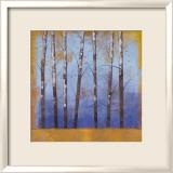 Birkenbäume II Kunstdrucke von Cheryl Martin