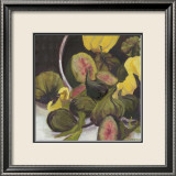 Figs II Print by Silvia Rutledge