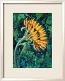 Sunflower Lmina gicle enmarcada por Marcella Rose