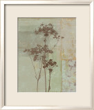Silver Foliage II Prints by Ella K.