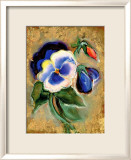 Pansy Lmina gicle enmarcada por Marcella Rose